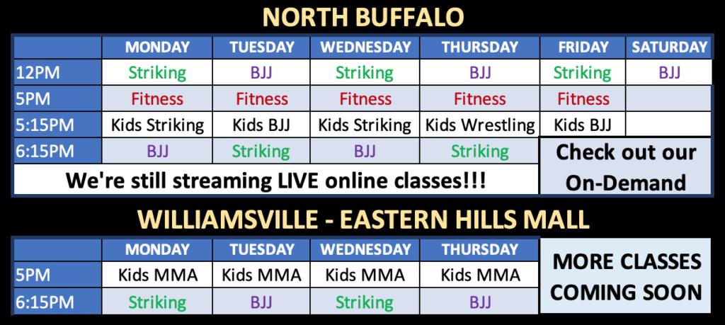 Williamsville Temporary Schedule